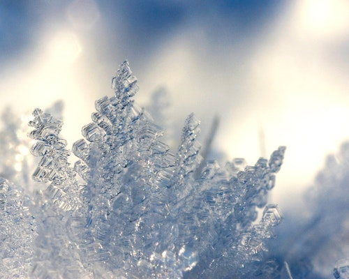 Frozen And Burst Pipes: Expect Many Insurance Claims After Historic Cold In Texas