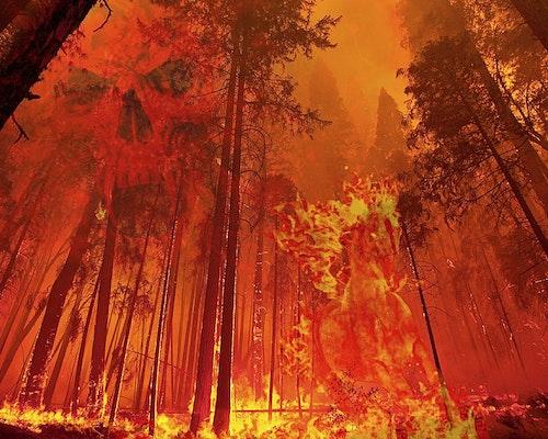 Firefighters Use Backfires as California's Mega Blaze Grows