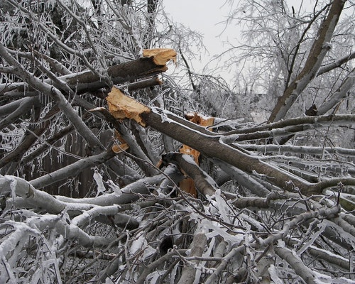 Oregon Utilities Work To Restore Power After Ice Storm Damage